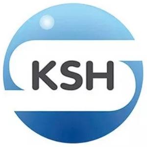 KSH-logo Kutatások (Egyenlő Fizetések)
